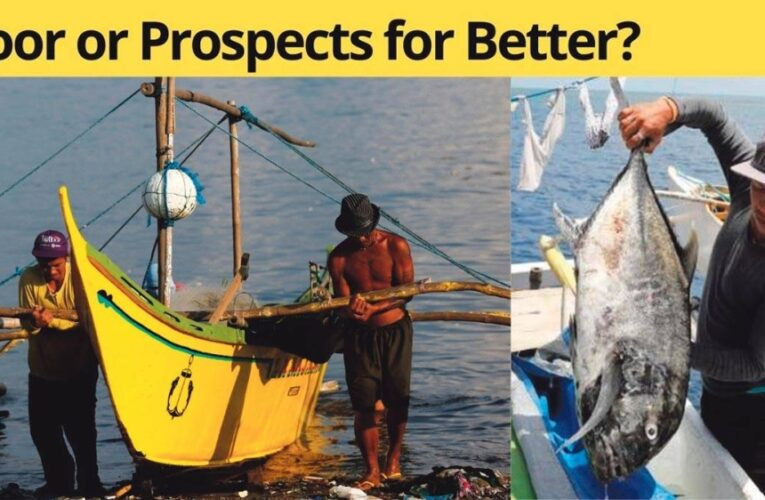 Fishing For a Fight or Better Economic Well-being?
